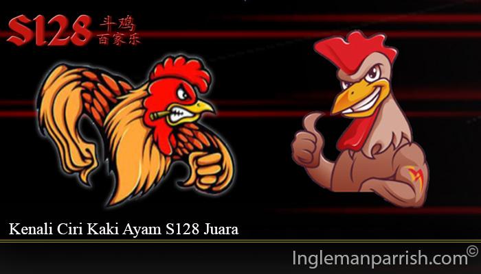 Kenali Ciri Kaki Ayam S128 Juara
