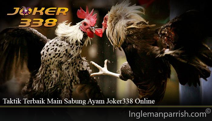 Taktik Terbaik Main Sabung Ayam Joker338 Online